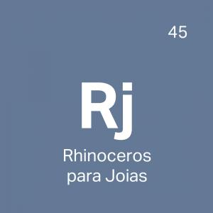 RJ - Curso Rhinoceros para Joias - 4ED escola de design