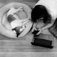 Como aprender estudando em casa - 4ED escola de design