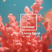 Cor do ano 2019: PANTONE 16-1546 Living Coral